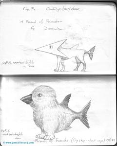 Carnet Bleu: Encyclopedia of…shark, vol.I p39 by Pascal