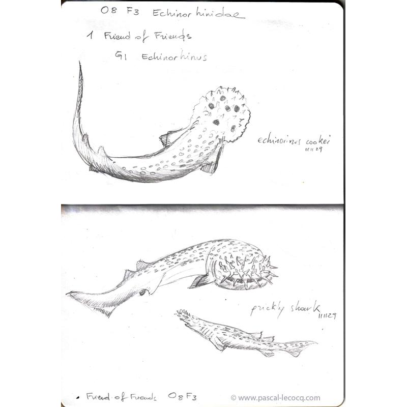 Carnet Bleu: Encyclopedia of…shark, vol.II p03 by Pascal