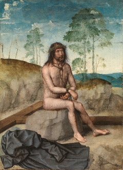 Christ seated on a Cold Rock