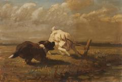 Geit en hond aan het vechten