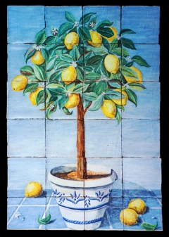 Lemon tree in pot, blue background
