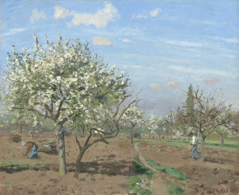 Orchard in Bloom, Louveciennes