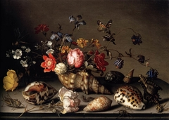 Still Life with Flowers, Shells, and Insects