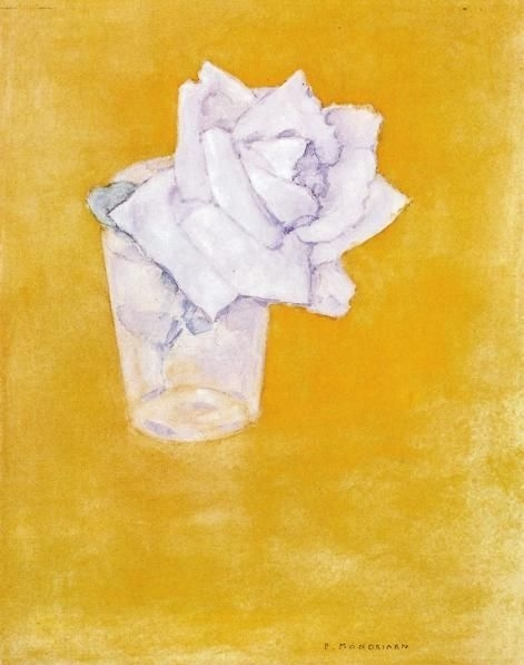 White Rose in a Glass