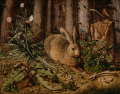 A Hare in the Forest