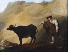 Berger napolitain chassant une vache d'une grotte