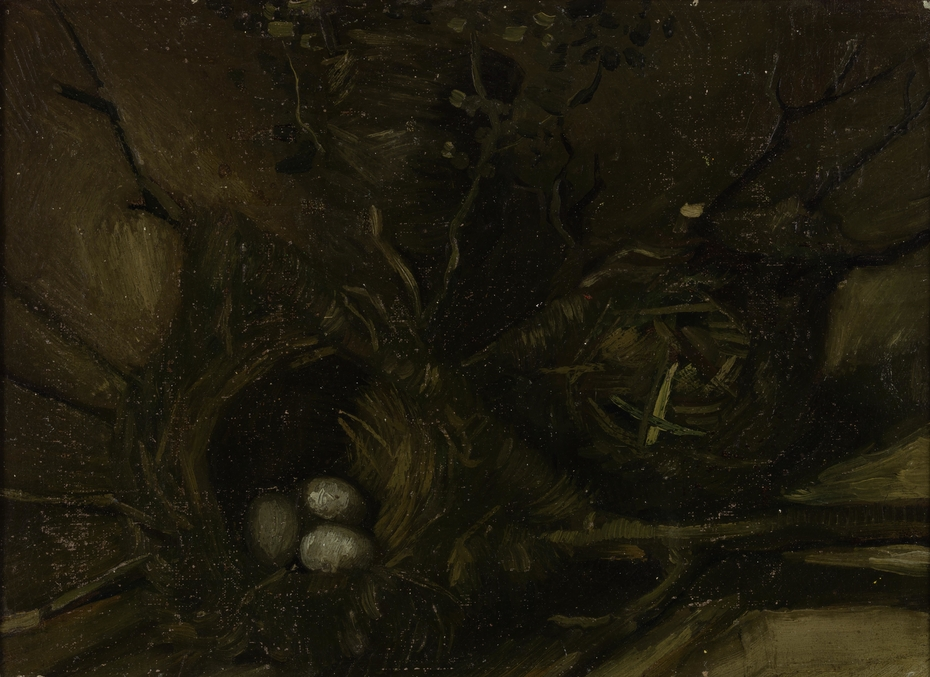 Birds' Nests