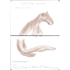 Carnet Bleu: Encyclopedia of…shark, vol.XV p22, - by Pascal