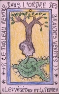 Les Vegetaux Et La Terre - Connaissance du Monde (series)