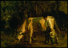 Cows and Cowherd