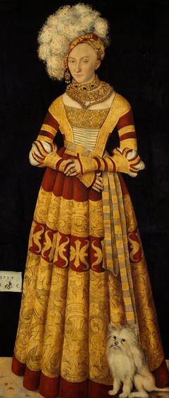 Duchess Katharina of Mecklenburg (1487-1561)