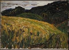 Kochel, Mountain Meadow