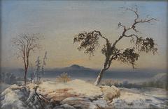 Landscape from Finnmark