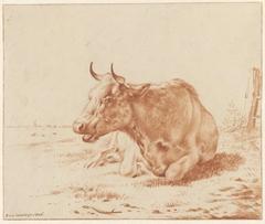 Landschap met liggende koe van voren gezien