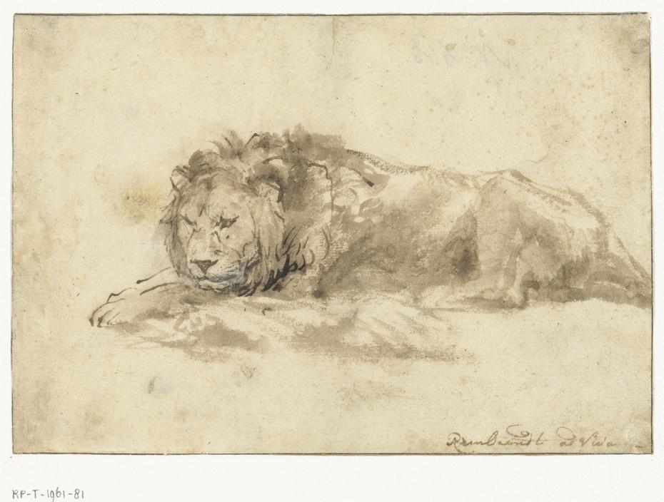 Liggende leeuw