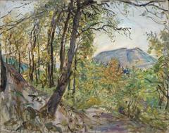 Pfälzische Landschaft
