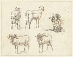 Schetsblad met twee geiten en drie rammen