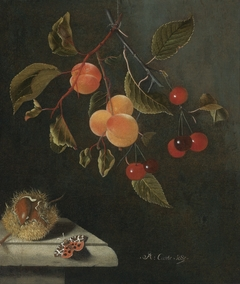 Still life with a Butterfly, Apricots, Cherries, and a Chestnut