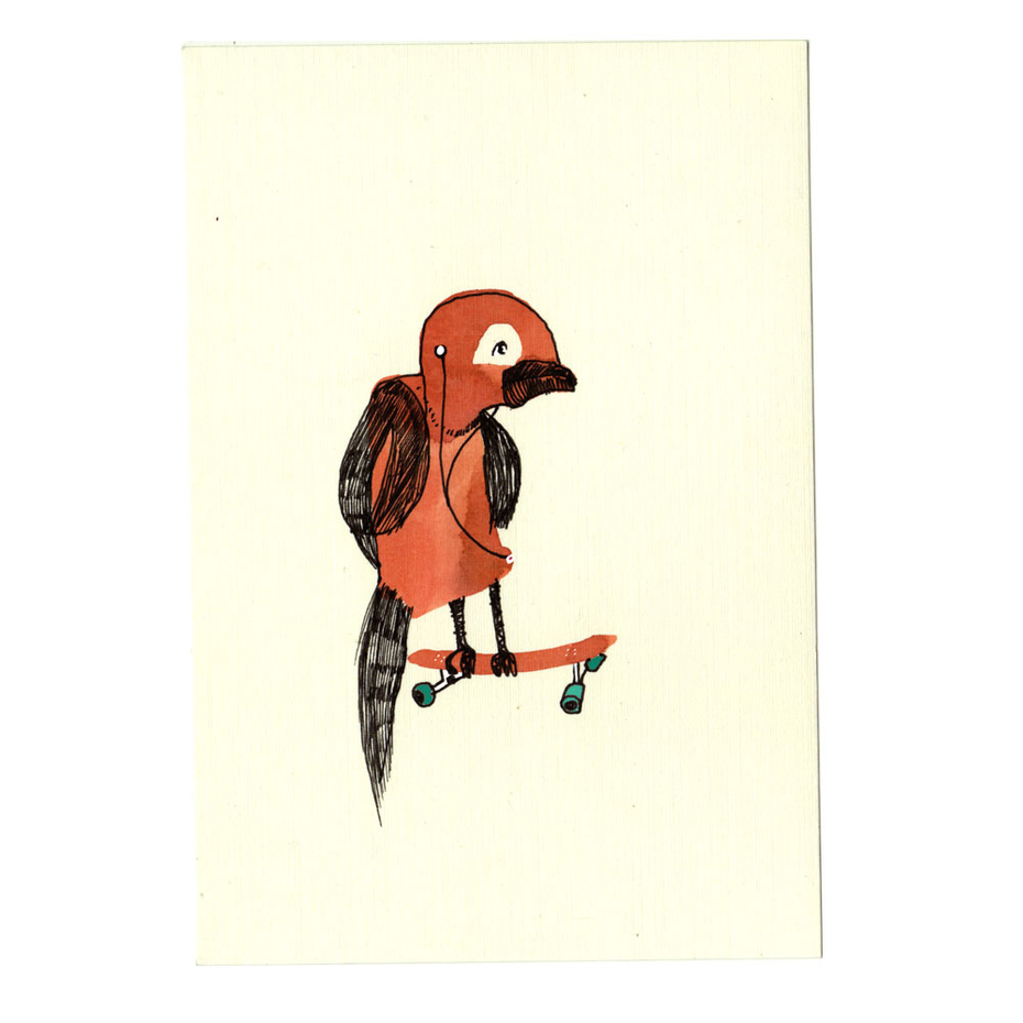 Teenager Skate Bird