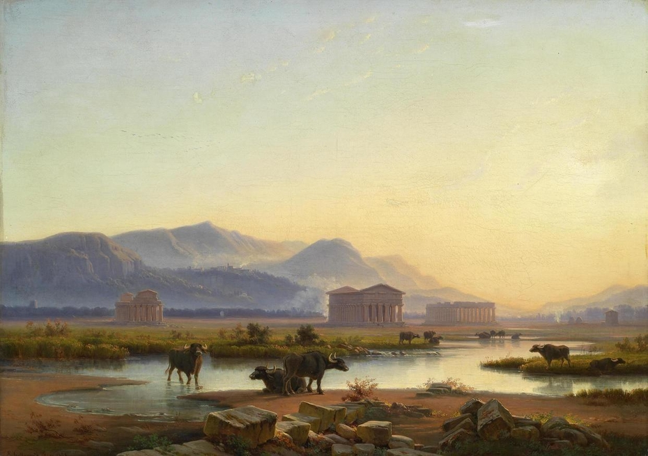 View of the temples of Paestum in the evening light / Water buffalo in the Campagna