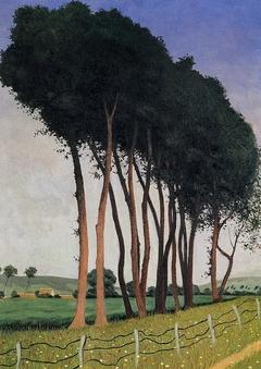 Famille d'arbres
