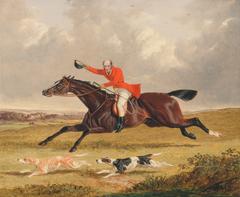 Foxhunting: Encouraging Hound