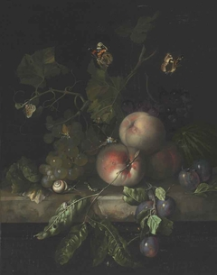 Fruit still life with insects on a marble slab