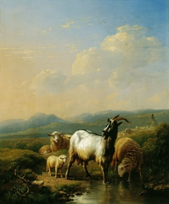 Goats and Sheep