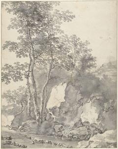 Groep berken bij een bergstroom