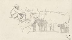 Herder zittend op een rots nabij enkele ossen