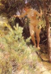 Nude Under a Fir