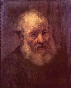 Portrait of a Bearded Old Man
