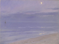 Skagen Beach in Moonlight
