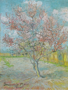 Flowering Peach Tree (Memory of Mauve)