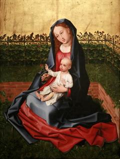 Virgin in a Garden