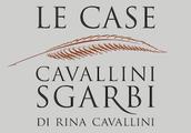 Cavallini-Sgarbi Foundation