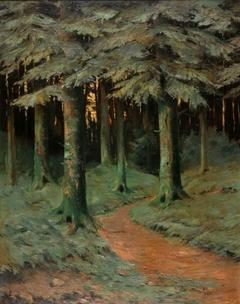 Forêt de Kichompré