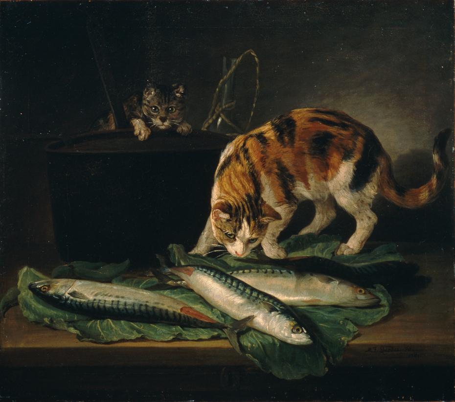 Katzen und Fische