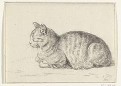 Liggende kat, naar links