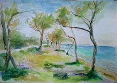 Παραλία στην Τήνο
