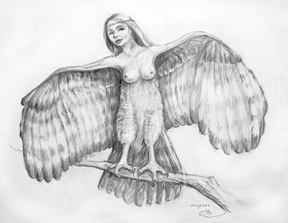 positive Harpy