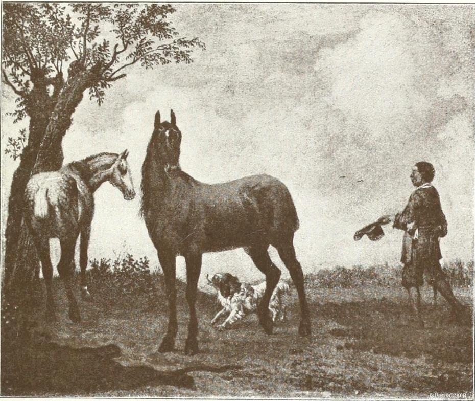 The Stadhouder's Horses