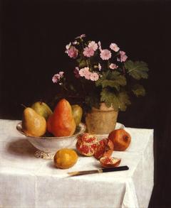 Still life (primroses, pears and promenates)