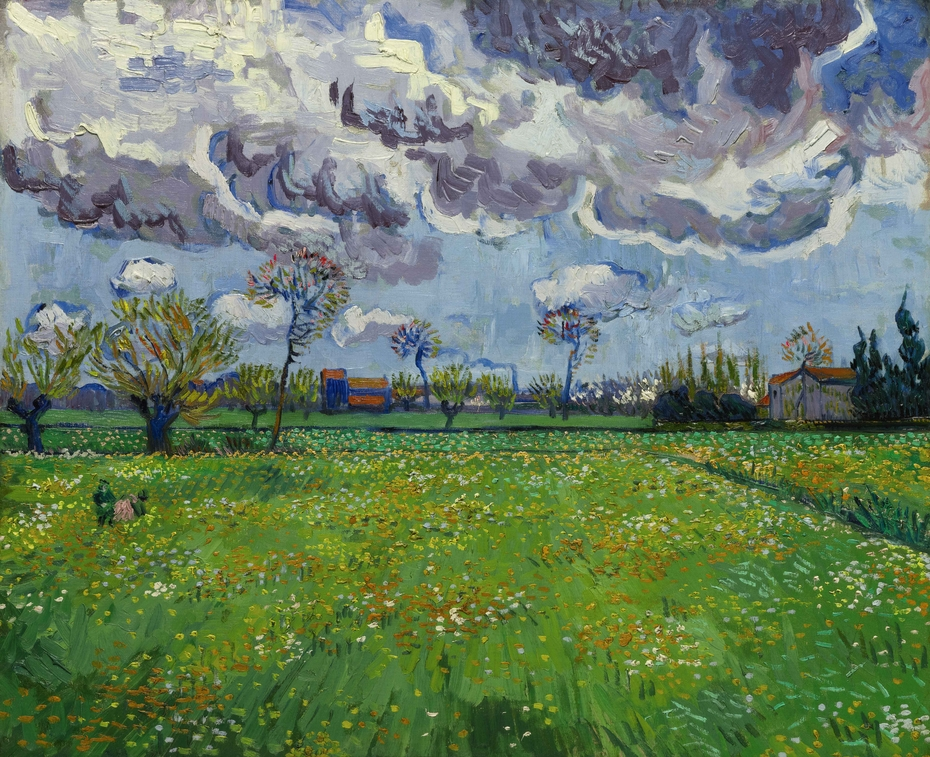 Meadow with Flowers under a Stormy Sky