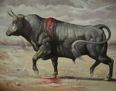 Wounded Bull