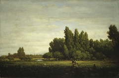 A Meadow Bordered by Trees
