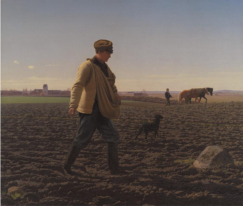 A Sower