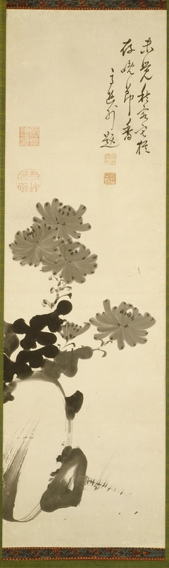 Chrysanthemums and Rock