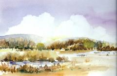 Landscape Series #1