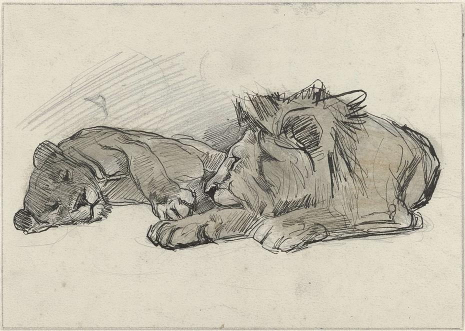 Liggende leeuw en leeuwin